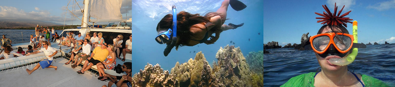 Hawaiian Ocean Sports - Snorkel Cruises