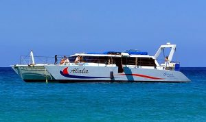 Luxury Power Catamaran Alala