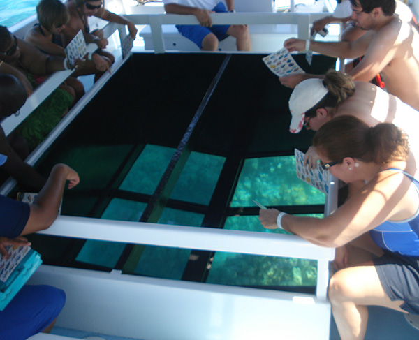 Glass Bottom Boat Tours - Anaeho'omalu Bay, Hawaii