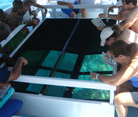 Glass Bottom Boat Cruises - Ocean Sports Hawaii