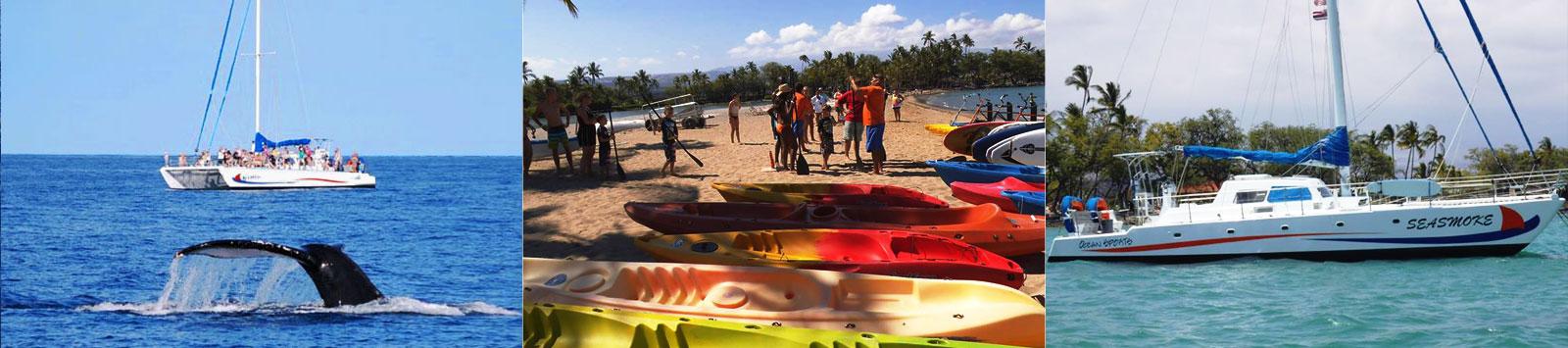 Ocean Sports News