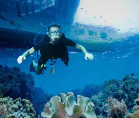 Scuba Dives - Ocean Sports Hawaii