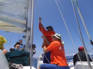 crewing the catamaran
